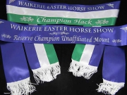 Royal Blue, White & Hunter Green Sash Set