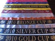 Various Special Award Sashes