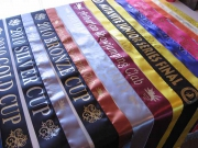 Mix of Sashes