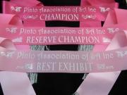 Pink; Pink; Pink!!!