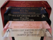 Mix of Single Sashes