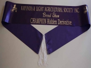 Purple Single Sash