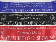 Special Award Sashes
