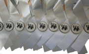 Special Award Ribbons with Rosette Discs
