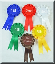 JR365-1 ~ Place Rosettes