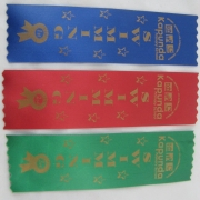 School Swimming Award Ribbon