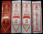 College Swimming Award Ribbons