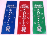 School Place Award Ribbons