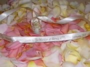 Cream Gold Edged Ribbon