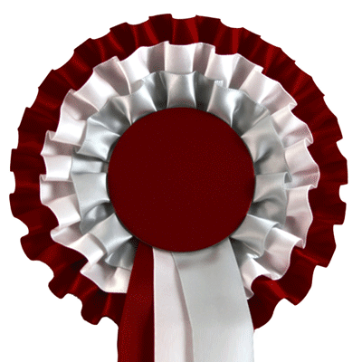 Jr365 3 Burgundy White Silver Just Ribbons Amp Rosettes