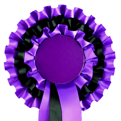 Jr365 3 Purple Black Purple Just Ribbons Amp Rosettes